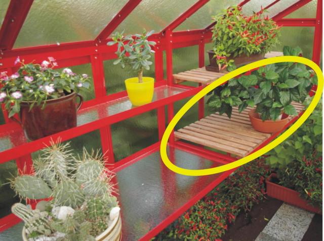 Pěstební stůl PRIMUS s dřevěným roštem 1,5 m
