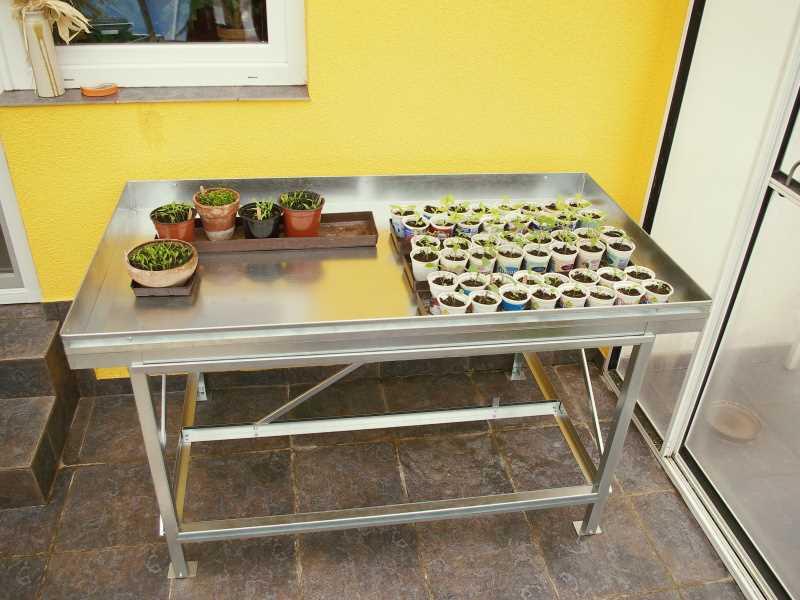 Pěstební stůl